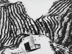 Image result for mario giacomelli