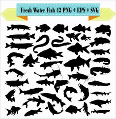 Mega Pack Fresh Water Fish Pike Bluegill Ell Perch Goldfish Carp Silhouette Vector Clipart PNG EPS Digital Files Scrapbook Supplies Instan by VectorArtShop on Etsy