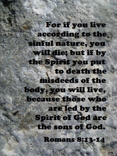 For if you live according to the sinful nature, you will die; but if by the Spirit you put to death the misdeeds of the body, you will live, because those who are led by the Spirit of God are sons of God. All Quotes, Bible Verses Quotes, Jesus Scriptures, New Testament Bible, Romans 8, Morning Prayers, Son Of God, Praise And Worship, Religious Quotes