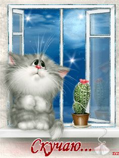Hearts and jewels wallpaper Silly Cats, Cute Cats, Crazy Cat Lady, Crazy Cats, Kittens Cutest, Cats And Kittens, Matou, Cat Quotes, All About Cats