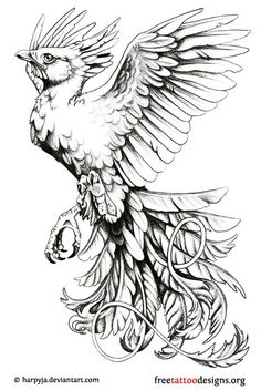 my mom wants a phoenix but shes very picky so ive been on the look out. Phoenix Tattoo flash by *harpyja Tattoos Skull, Black Tattoos, Animal Tattoos, New Tattoos, Star Tattoos, Wing Tattoos, Celtic Tattoos, Sleeve Tattoos, Belly Tattoos