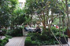 Restaurante Camelia no Mandarin Oriental - Dicas: Hotéis em Paris | DRESS A PORTER – BLOG