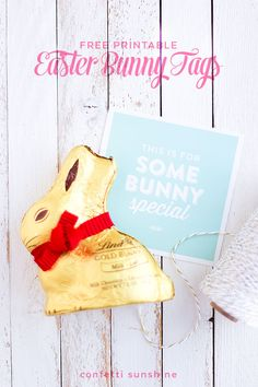 Easter Bunny Gift Tags | confetti sunshine