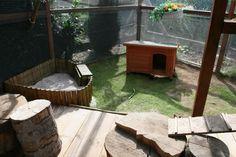 Guinea Pigs, Rabbit Ideas, Bunny, Rabbits, Caravan, Outdoor Decor, Houses, Inspiration, Photos