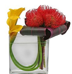Modern glass vase with calla lilies and protea handtie - Again,this would look better in combination with other cube vase designs
