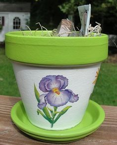 Painted Flower Pot Gift Set With Seeds and by EllensClayCreations❤❤❤