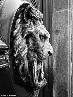 Aldaba típica by Caty V. Antique Door Knockers, Door Knobs And Knockers, Cool Doors, Unique Doors, Sculpture Ornementale, Sculptures, Lion Door Knocker, Desenho Tattoo, Lion Art