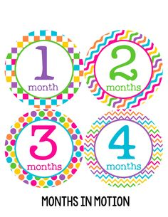 Baby Girl Monthly Baby Stickers Style #199