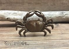 Crab Knob in Antique Brass, Red or custom - Hermit King Crab Dungeness Pinchers Shell Drawer Pull - Beach Theme - Nautical Nursery decor by knobpologie on Etsy https://www.etsy.com/listing/460114718/crab-knob-in-antique-brass-red-or-custom