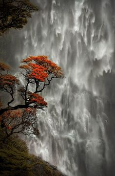 Devil's Punchbowl Falls, New Zealand via photoz-hub.blogspot.com