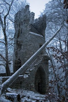winter castle tower.