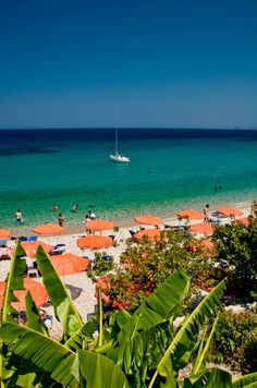 Tropical beach Samos island - Greeka.com | Greece | Greek islands