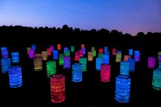 Longwood's Meadow will play host to the Water Towers, a collection of 69 symmetric towers creating a glowing maze of light that changes hues to music.
