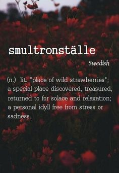 """Photo: Smultronställe [Swedish] ~ (n.) lit. """"place of wild strawberries""""; a special place discovered, treasured, returned to for solace and relaxation; a personal idyll free from stress or sadness. Unusual Words, Weird Words, Rare Words, Big Words, Unique Words, Great Words, Beautiful Words, Beautiful Life, La Formation"""