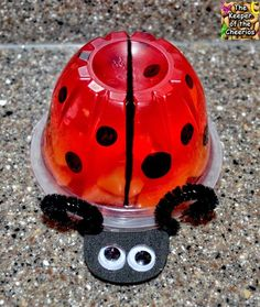 40 Adorable DIY Ladybug Projects and Tutorial Ladybug Jello Fruit Cup-party idea Valentines Day Party, Valentines For Kids, Valentine Ideas, Ben E Holly, Miraculous Ladybug Party, Ladybug 1st Birthdays, Jello Cups, Fruit Cups, Fruit Jello