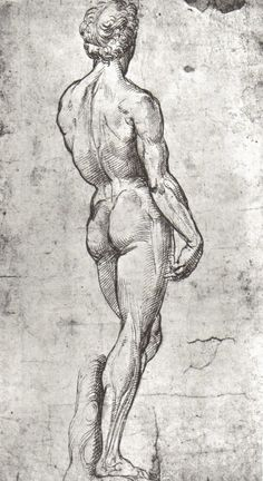 Raphael Sanzio (1483-1520), Study of David after Michelangelo #raphael #drawing
