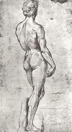 Raphael Sanzio (1483-1520), Study of David after Michelangelo #raphael #drawing