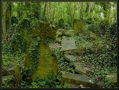 Abandoned graveyard. by scarfacesteve.deviantart.com