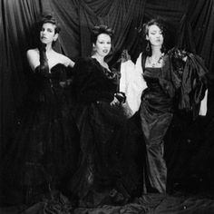 The Vyllies consisted of Manu Moan on vocals and percussion, Ursula Nun on keyboards and Ilona Prism on bass and were active in the indie music scene during the mid-80s. The three met while studying at the University of Lausanne in Lausanne, Switzerland.