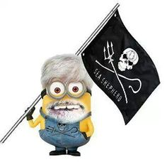 Paul Watson, Caption of the Sea Shepherd