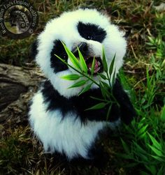 Nobody can resist the cuteness of baby animals. They are curious naive and sometimes funny just like our kids. You're a hardened person if you can scroll through these baby animals photos without your heart beating fast.