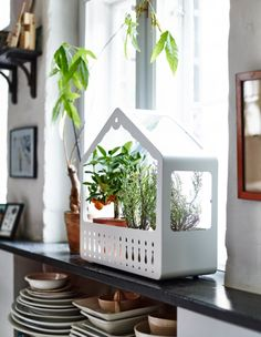 IKEA PS 2014 Greenhouse, white - great for indoor plants Ikea Ps 2014, Bedroom Walls, Design Ikea, Corner Plant, Ikea New, Indoor Greenhouse, Miniature Greenhouse, Decoration Inspiration, My New Room