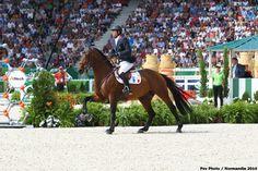 - Patrice DELAVEAU - ORIENT EXPRESS HDC équestres mondiaux - Normandie 2014