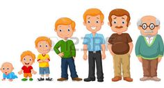 Illustration about Illustration of Cartoon development stages of man. Illustration of grow, development, biology - 50839888 Preschool Family, Body Preschool, Preschool Classroom, Human Life Cycle, Baseball Birthday Invitations, Man Illustration, Man Set, Cute Family, Life Cycles
