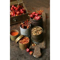 Chilies, spices that scream HOT