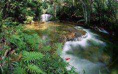 """""""Una volta distrutta, la bellezza della natura non può essere riacquistate ad ogni costo."""" Ansel Adams pic.twitter.com/5x9z3zX67L via @ roseslaleler"""