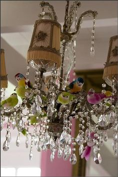 BIrds in Chandelier