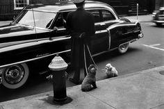 U.S. NYC, 1953 // Elliott Erwitt -repinned by San Francisco studio photographer http://LinneaLenkus.com #topphotographers