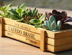 Wooden Succulents Pot Box , 22.5 * 8cm Rectangle Cacti Cactus Mini Garden Flower Planter Crate Storage Decor DIY Home  Description: - Vintage, retro design provide an arty look - Be able to serve as a fleshy flower pot, shelf or storage box - Perfect decoration for your room,fairy garden or terrarium, micro landschaft - Durable, anti-corrosion - Would also look lovely in a country farmhouse kitchen planted with herbs - Great for indoor or outdoor use - Perfect gift for office, home, shopping…