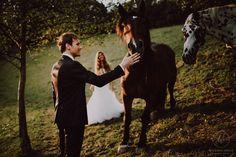 Heiraten inmitten der Bäume in der Nähe von Graz. Standesamtlich oder zeremoniell. Im kleinsten Kreis oder mit all euren Liebsten. Sag ja! Sag Ja, Animals, Graz, Getting Married, Animaux, Animal, Animales, Animais
