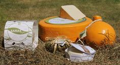 Slow Food cheese