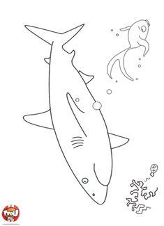 Coloriage: Requin dans la mer