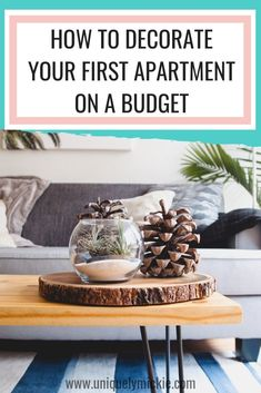 How To Decorate Your First Apartment On A Budget Small Living 1st