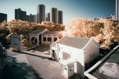 Infrared Hong Kong by Yiu Yu Hoi.