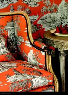 Renée Finberg ' TELLS ALL ' in her blog of her Adventures in Design love this toile!!