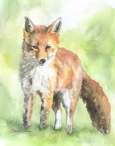 Fox watercolor giclée reproduction. Portrait/vertical orientation. Printed on fine art paper using archival pigment inks. This quality printing allows over 100 years of vivid color in a typical home d
