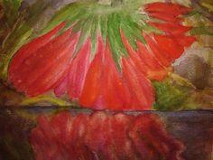 Červený kvet