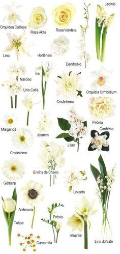 Casamento + Flores brancas | Wedding + White flowers