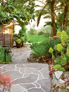 Colorful succulents line this Carmel, California garden path. A wild, seemingly un-landscaped design helps the garden feel organic and authentic to the land. (Photo: David Tsay)