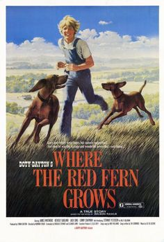 Where the Red Fern Grows 27x40 Movie Poster (1974)
