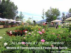 Assisi, eventi, manifestazioni e feste in Umbria - Itinerari Assisi e dintorni