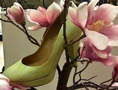 Countdown to Spring… Atelier Classe Leather Shop in Florence (Italy) Via Torta 16-18/r www.atelierclasse.com #atelierclasse #bags #bag #fetish #school #art #pelle #fashion design #florence #italy #shoes #girls #women #woman #womanshoes #girl #green #milanofashionweek #fashion #spring #leather #holidayflorence #tuscan #apartment #hipster #moda #mod #mode #paris #sex #funk #luxury #trendy #style #cool #aifs #cimba #nyc street style #new york fashion #heels #heels #foot #feet #madeinitaly