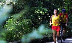 Estrada das Paineiras: para correr lado a lado com a natureza Foto: Marizilda Cruppe / Agência O Globo (04/03/2006)