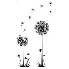 TIFENNY Creative PVC Dandelion Flower Plant Tree Removable Home Decal Wall Sticker *** Continue to the product at the image link.