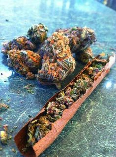::Stank::dank::purp skurp::hairy::cheesy:: nugs::chronic::blunts::cigarillo::roll up::blunt blowin'::kush::ganja::marijuana:: Mary Jane:: cannabis::420::green::herb::NoEllie0123