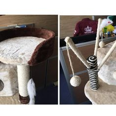 Cat Tree Pet Furniture with Scratching Post, Beige, 64 in *** Check out this great product. (This is an affiliate link) Pet Furniture, Scratching Post, Cat Tree, Beige, Pets, Link, Home Decor, Check, Interior Design